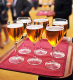 Cold beers, bartender, catering service Stock Photo