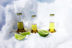 Cold beers. Stock Image