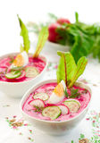 Cold beet soup Stock Images