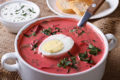 Cold beet soup with egg and herbs closeup. horizontal Royalty Free Stock Image