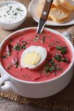 Cold beet soup with egg and herbs closeup. Vertical Royalty Free Stock Photos