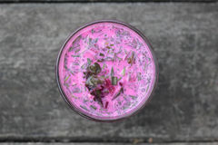 Cold beetroot soup. Stock Image