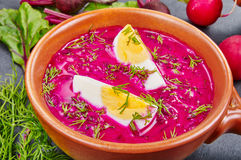 Cold beetroot soup. Popular meal during summer stock photo