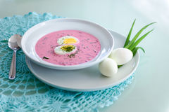 Cold beetroot soup Stock Image