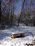 Cold bench Stock Photography