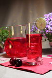 Cold berry mors drink Royalty Free Stock Images