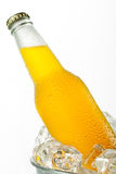 Cold Beverage in Ice Stock Images