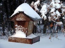 Cold bird feeder. Bird feeder after a major snowstorm Royalty Free Stock Image