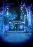 Cold blue Christmas night Stock Photo