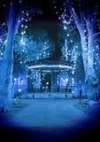 Cold blue Christmas night stock photo