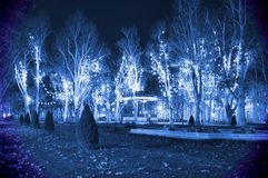 Cold blue Christmas night Royalty Free Stock Photography