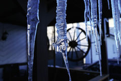 Cold blue icicles Royalty Free Stock Image