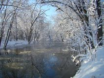 Cold Blue Skies. A freezing stream after a significant snow storm. Beautiful blue sky contrasting with the colorless landscape Royalty Free Stock Image