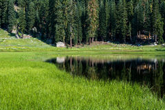 Cold Boiling Lake at Lassen Volcanic Natonal Park Stock Images