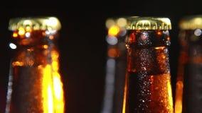 Cold Bottle of Beer on Black Background Stock Images