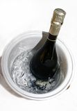 Cold bottle of champagne on ice. With white background stock image
