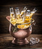 Cold bottles of beer in the brazen bucket. Royalty Free Stock Photography