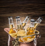 Cold bottles of beer in the brazen bucket. Cold bottles of beer in the brazen bucket on the wooden table Stock Photography