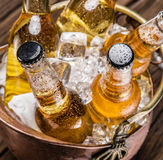 Cold bottles of beer in the brazen bucket. Cold bottles of beer in the brazen bucket on the wooden table Royalty Free Stock Images