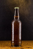 Cold brown beer bottle on black Stock Photos