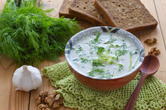 Cold Bulgarian soup Stock Image