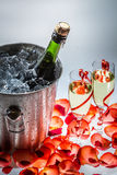 Cold champagne on New Year holiday Royalty Free Stock Image
