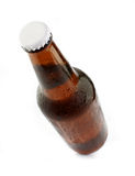 Cold chilled beer in brown bottle Stock Images