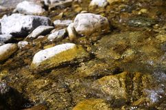 Cold clean moutain river  rushing on the stones Stock Photography