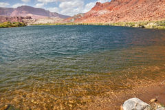 Cold and clear water of the Colorado River Royalty Free Stock Photo