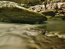 Cold Clear Water Of Mountain River In Winter Time Stock Image