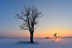 Cold ,but colorful February evening in Lithuania Royalty Free Stock Photo