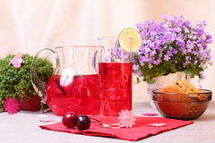 Cold cranberry mors drink Royalty Free Stock Photo