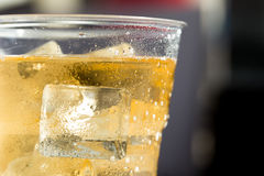 Cold Cup of Beer Royalty Free Stock Images