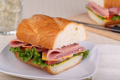 Cold Cut Sandwich Closeup Royalty Free Stock Photo