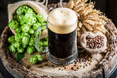 Cold dark beer with big foam, wheat and hops Royalty Free Stock Photos
