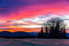 Cold dawn Royalty Free Stock Photography