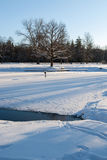 Cold day Royalty Free Stock Photos
