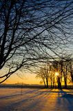 A sunset during winter season in Iowa on a Farm Royalty Free Stock Images