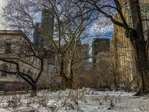A cold day in Manhattan royalty free stock images