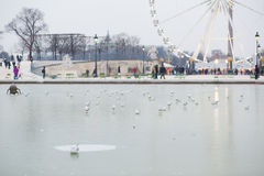 Cold day in Paris Royalty Free Stock Photography