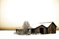 A cold deserted barn Stock Images