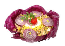 Cold dish decorated with purple onion and cabbage Stock Images