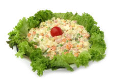 Cold dish mixed salad decorated with crispy lettuc Royalty Free Stock Photography