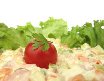 Cold dish mixed salad decorated with crispy lettuc Royalty Free Stock Image