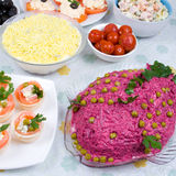 Cold dishes and salads Stock Image