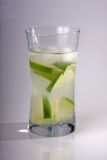 Cold drink. Cold alcoholic drink with fresh lime on a plain background royalty free stock image