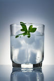 Cold drink with ice and mint. In a clear glass cup on a glass table Royalty Free Stock Images