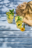 Cold drink with lemon and mint leaf as summer background Royalty Free Stock Photos