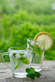 A cold drink made of lemon, lime. And mint outdors Stock Photos