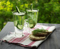 Cold drinking water with cucumber and dill in a glass Stock Image